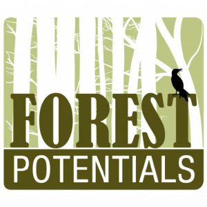 Forest Potentials - Olaf Lemitz - Logo